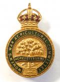 WW1 Womens War Agricultural Worcester committee badge