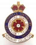 Royal Hampshire County Hospital honorary collector fundraiser badge