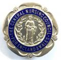 General Nursing Council registered sick childrens nurse RSCN silver badge
