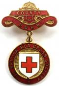 British Red Cross Society Irish County Down badge Northern Ireland