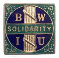 Building Workers Industrial Union BWIU Solidarity badge 1914 -1923