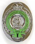 National Nursery Examination Board chrome and enamel badge.