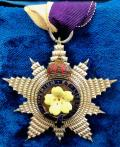 Primrose League Honourable Order of the Grand Star badge