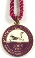 2008 Punchestown Racecourse Irish horse racing club badge