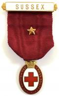 British Red Cross Society Honorary Vice President Sussex badge.