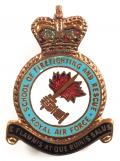 RAF School of Firefighting & Rescue Royal Air Force badge c1950s.