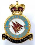 RAF No 46 Battle of Britain Squadron Royal Air Force badge