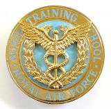 Royal Air Force Nurse Training School uniform badge