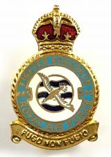 RAF No 245 Battle of Britain Northern Rhodesian Squadron badge.