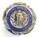General Nursing Council registered mental nurse RMN qualification badge