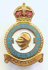 RAF No 264 Battle of Britain Fighter Squadron Royal Air Force badge
