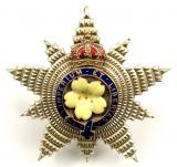 Honourable Order of the Grand Star Primrose League second grade political badge