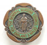 General Nursing Council State Enrolled Nurse SEN badge unnamed